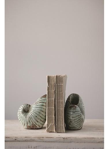 Warm Design Terracotta Deniz Kabuğu Kitap Düzenleyicisi Yeşil
